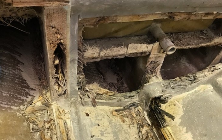 Further investigation revealed the transom and whole underfloor structure of the boat was rotten